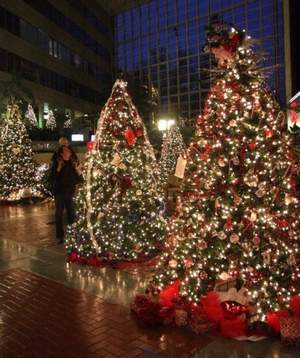 Fun things to do with the family for Christmas in Greenville, SC